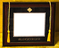 Valencia College Diploma Frame W/ Mahogany/Gold Frame Black/Gold Mat Gold Medallion Seal/School Name